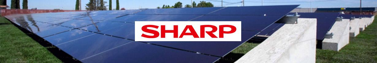 champs solaire panneaux Sharp thin film